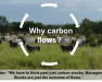 Image of cows and text Why Carbon Flows over the image